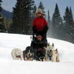 dogsledding1
